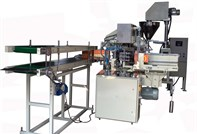 Automatic carton filling machine